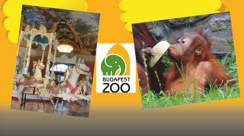 Szünidei kirándulás a Fővárosi Állatkertbe
